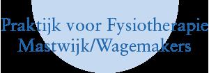 Fysio Oudewater Logo
